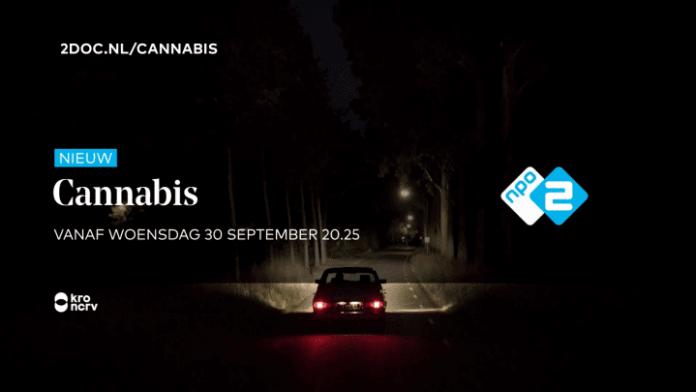 cannabis 2doc npo2 serie documentaireserie persbericht reactie Openbaar Ministerie (OM)