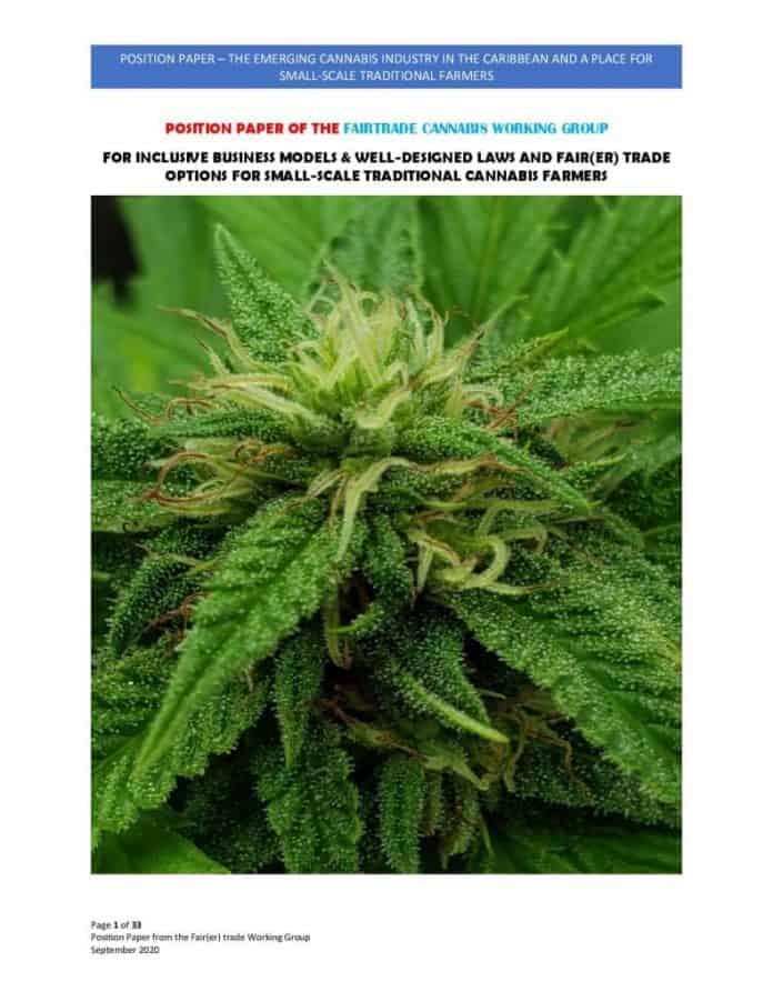 Fair Trade cannabis werkgroep publiceert position paper voor Caraïben