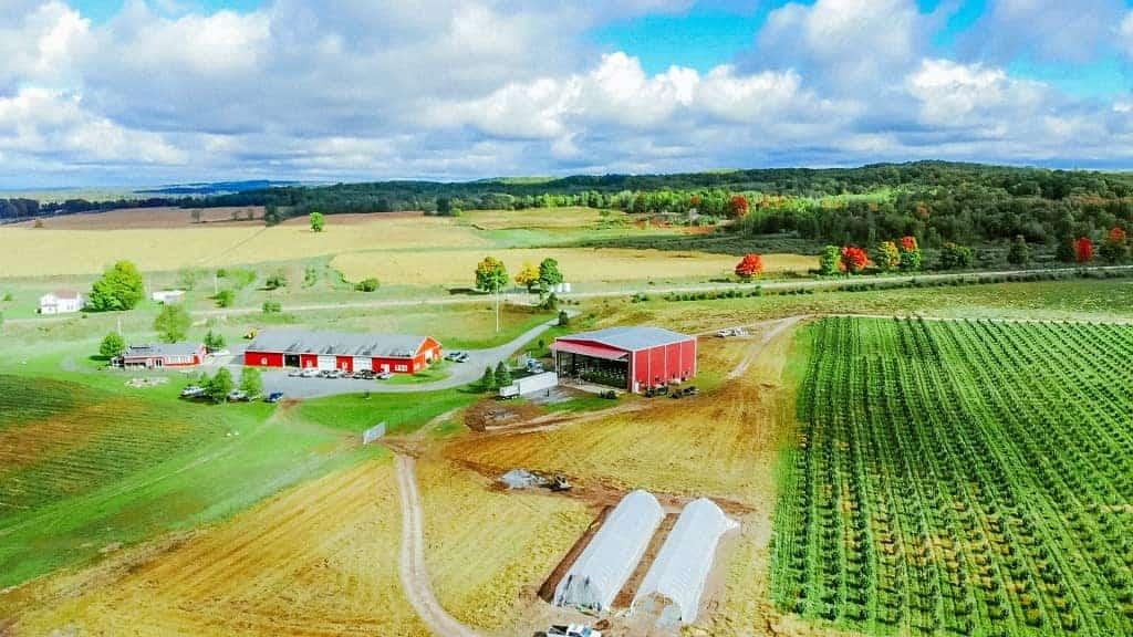 Skymint Farms buitenwiet Michigan