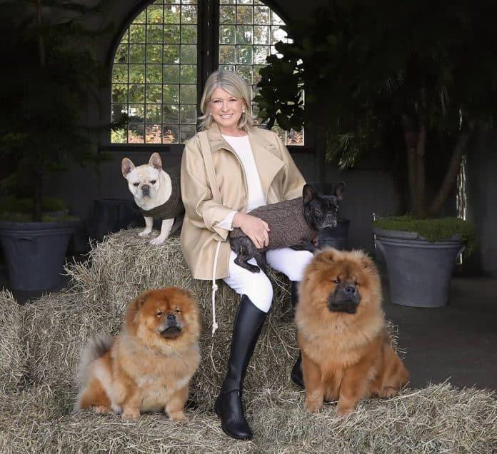 Martha Stewart Canopy Growth CBD huisdieren