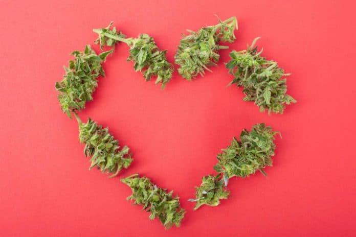 valentijnsdagweekend valentijnsdag cannabis legale verkoop