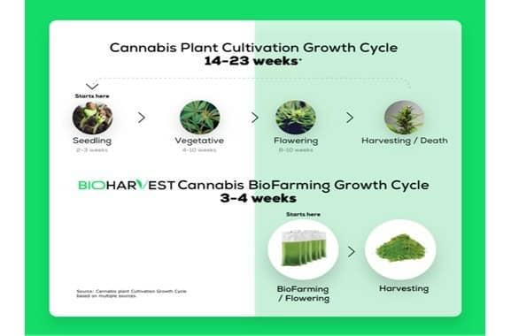 BioFarming-technologie productiecyclustijd cannabis verkorten