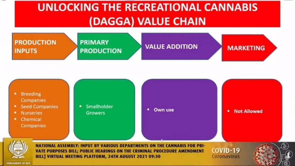 Zuid Afrika legalisering recreationale cannabis