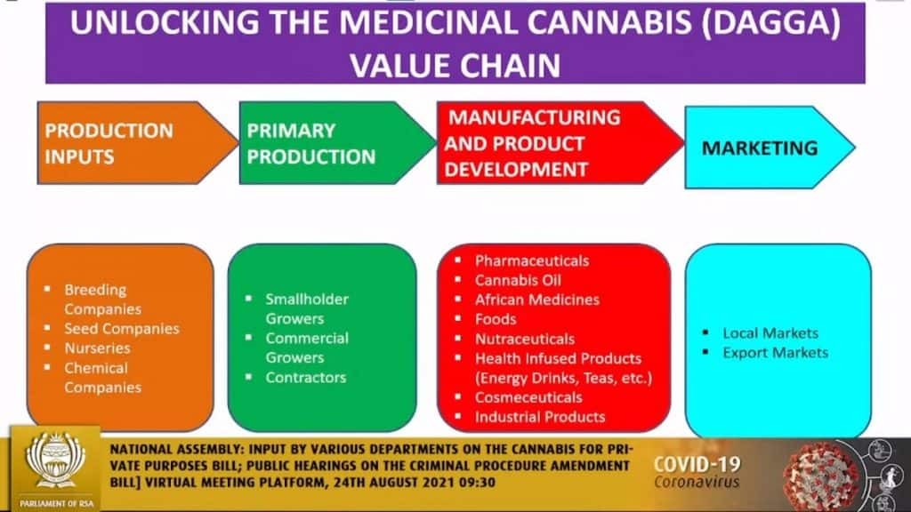Zuid Afrika medicinale cannabis wetgeving