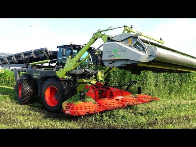 industriële hennep oogst Dun Agro Oude Pekela
